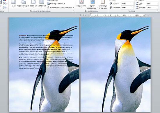 как сделать фото на всю страницу в word