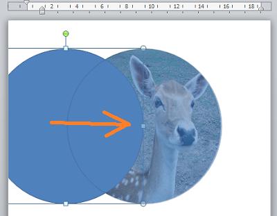 как в word сделать картинку круглой